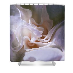 Dark And Light Shower Curtain