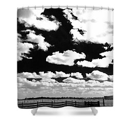 Dark Country, La.  Shower Curtain