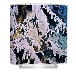 Shower Curtain featuring the painting Dark Cover by Carolyn Rosenberger