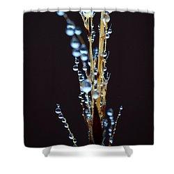 Dark Drops Shower Curtain