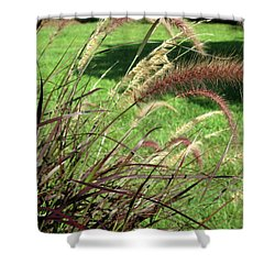 Dark Feather Grass Shower Curtain