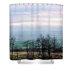 Dark Forest Shower Curtain