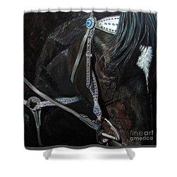 Dark Gem Shower Curtain
