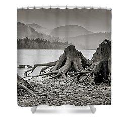 Dark Lake Shower Curtain