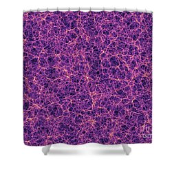 Dark Matter Distribution Shower Curtain