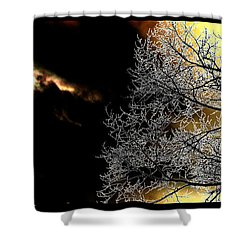 Dark Meets Light Shower Curtain