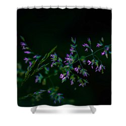Dark Pink Shower Curtain