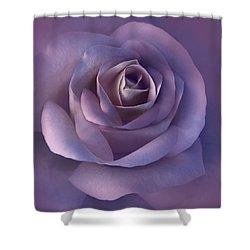 Dark Plum Rose Flower Shower Curtain by Jennie Marie Schell