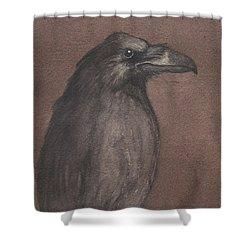 Dark Raven Shower Curtain