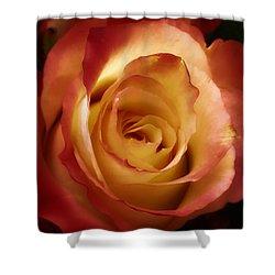 Dark Rose Shower Curtain