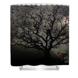 Dark Valley Shower Curtain