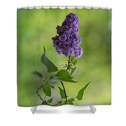 Dark Violet Lilac Shower Curtain