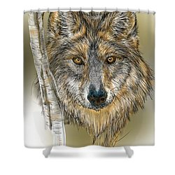Shower Curtain featuring the digital art Dark Wolf With Birch by Darren Cannell
