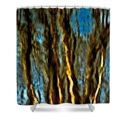Dark Wood Shower Curtain by Gillis Cone