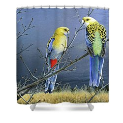 Darkness Before The Deluge - Pale-headed Rosellas Shower Curtain