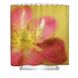 Darling Shower Curtain