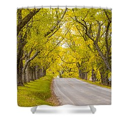 Darling Hill Autumn Shower Curtain