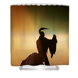 Darter Bird With Misty Sunrise Shower Curtain