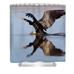 Darter Landing Shower Curtain