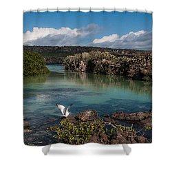 Darwin Bay     Genovesa Island      Galapagos Islands Shower Curtain
