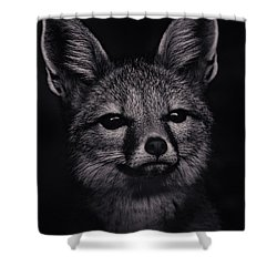 Dash  Shower Curtain by Brian Cross