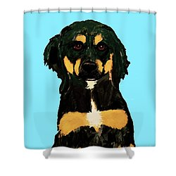 Date With Paint Sept 18 9 Shower Curtain by Ania M Milo