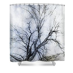 Daunting Shower Curtain