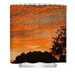 Davenport At Dusk Shower Curtain