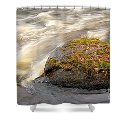 Shower Curtain featuring the photograph Dave's Falls #7442 by Mark J Seefeldt