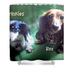 Dave's Roz And Sprinkles Shower Curtain