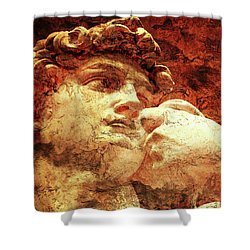 David By Michelangelo Shower Curtain