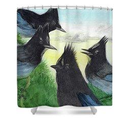 Dawn Chorus Shower Curtain