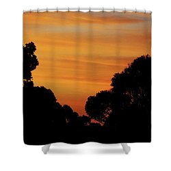 Dawn In The Forest Shower Curtain by Mark Blauhoefer