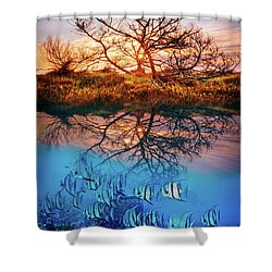 Shower Curtain featuring the photograph Dawn Over The Reef by Debra and Dave Vanderlaan
