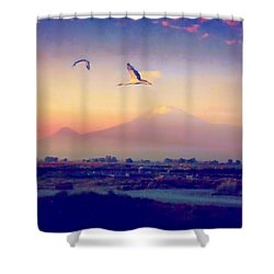 Dawn With Storks And Ararat From Night Train To Yerevan Shower Curtain