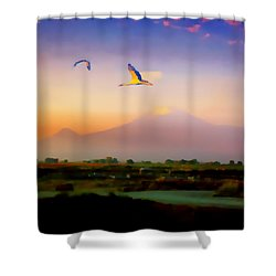 Dawn With Storks And Ararat From Night Train To Yerevan II Shower Curtain