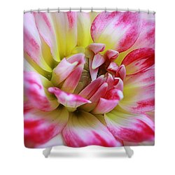Dawning Shower Curtain by Deborah  Crew-Johnson