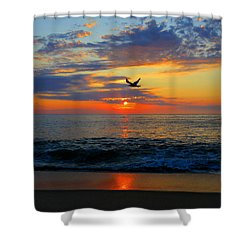 Dawning Flight Shower Curtain by Dianne Cowen