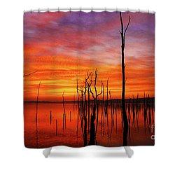 Dawns Approach Shower Curtain