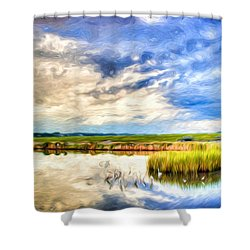 Day At The Marsh Shower Curtain