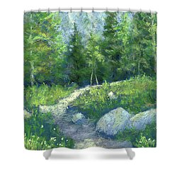 Day Hike Shower Curtain