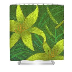 Day Lilies Shower Curtain
