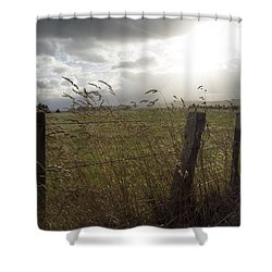 Day Out Shower Curtain