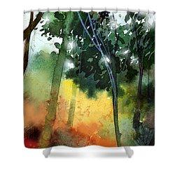 Daybreak Shower Curtain by Anil Nene