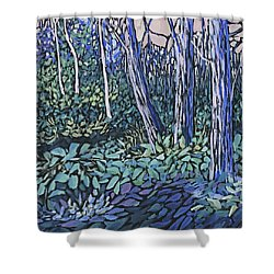 Shower Curtain featuring the painting Daybreak by Joanne Smoley