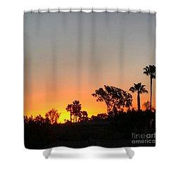 Daybreak Shower Curtain by Kim Nelson
