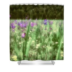 Daydreams In A Meadow Shower Curtain by Rick Furmanek