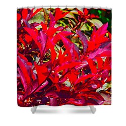 Shower Curtain featuring the photograph Dayglo Flora by Jesse Ciazza