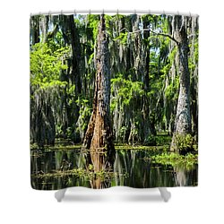 Daylight Swampmares Shower Curtain by Kimo Fernandez