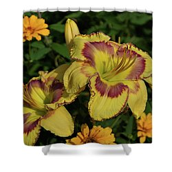 Shower Curtain featuring the photograph Daylilies And Zinnia by Sandy Keeton
